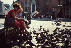 overzealous (ewitsoe) Tags: birds flock greedy hungry ewitsoe nikon d80 35mm street city life women feeding frenzy summer poland crakow krakow plaze oldsquare staryrynek