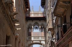 Barrio Gtico 2 - Puente Neogtico (pniselba) Tags: espaa spain barcelona barrio gotico barriogotico gothic