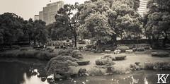 Hibiya park 2 (ZKent.Yousif) Tags: chiyodaku tkyto japan jp  chku  minatoku canon sigma sigma1750mm 50mm streetphotography street park parks bw blackandwhite