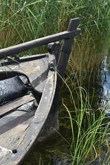 DSC_0223 (Lotsig) Tags: gotland  island boat bt eka rowingboat roddbt sommar summer fr vatten water stersjn hav sea strand beach