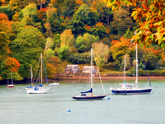 View from Agatha Christie's Greenway Estate, Devon (photphobia) Tags: agathachristie greenway greenwayestate galmpton riverdart devon southdevon nationaltrust oldwivestale outdoor outside green water river ships ship boats boat barges barge