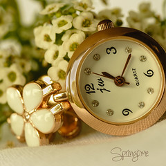 Springtime (judith511) Tags: odc time spring alyssum watch