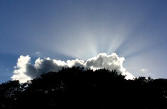 Ray of light (doreen_maclennan) Tags: sun rays sky clouds bright light blue