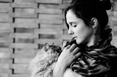 lucia (Valerio Spisani) Tags: ritratti gatti animali