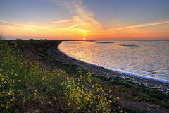 Alviso Marina - Slough Loop Trail (calwhiz) Tags: sunset sanfranciscobay alviso wetland alvisomarina alvisomarinacountypark alvisoca sloughlooptrail