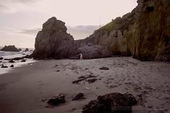 EMSB_0655B (senseii1) Tags: california malibu pch pacificcoasthwy californiastateparks elmatadorstatebeach californiastatebeaches