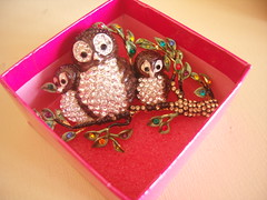 Butler & Wilson Owls Brooch (Bracelets To Buckles) Tags: jewellery owl to bracelets buckles
