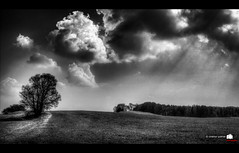 cloud structure (asator - Thanks for over 2.000 views :)) Tags: blackandwhite bw tree clouds landscape bavaria cloudy hdr cloudstructure shaftsofsunlight canonefs1855mmf3556is christianwaltherphotography
