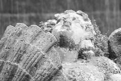At the Villa d'Este (rosewoodoil) Tags: sculpture art texture fountain stone mood stonework monotone greyscale villadeste photographedublin