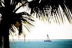 LR-1459 (Sand_of_time) Tags: ocean west marina golden casa key waldorf catamaran astoria sail