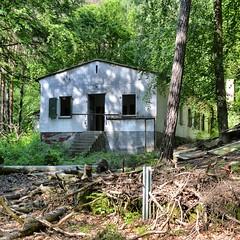 old kids summer camp (milos.moeller) Tags: abandoned ruine usedom ferienlager lostplace oldkidssummercamp
