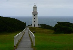 Path to the Cape Otway Lighthouse (The Pocket Rocket) Tags: rain day windy australia victoria southernocean thegreatoceanroad capeotwaylighthouse explore205