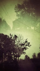 Road to (Love to draw2012) Tags: trees urban blackandwhite nature landscape doubleexposure toned