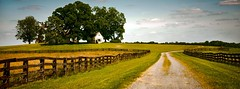farm lane (Sky Noir) Tags: road trees usa house home rural fence photography us farm unitedstatesofamerica country wide peaceful line lane fields serene aspect skynoir