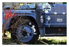 _15 (Dirio da Foto) Tags: street floripa brazil art graffiti stencil florianpolis skate csc grafite mumu comando carianos
