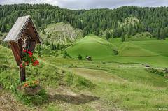 San Martino in Badia, Sankt Martin in Thurn, San Martin de Tor (Localit Longiar - Campill, vila di Misc) (cicrico) Tags: dolomiti bolzano altoadige valbadia longiar gadertal sanmartinoinbadia sanmartindetor sanktmartininthurn