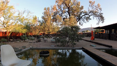 Mojave Sands 04539 (Omar Omar) Tags: california ca usa desert joshuatree desierto calor californie usofa  desertsoutwest mojavesands mojavesandsmotel mojavesandshotel