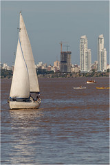 Vertical (diegohernanibarra) Tags: argentina rio nikon sigma rosario parana torres diegohernanibarra