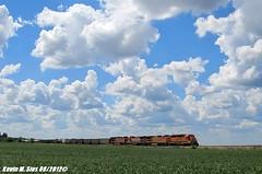 BNSF Local (CQDX018) Tags: santa burlington train mixed sub local fe northern freight bnsf litchfield eastbound manifest 6619 gp382 beardstown 553 2034 8629 b408 b408w es44c4 cqdx018 lspr658919