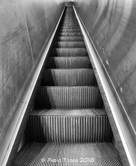 escalator (Fabio Tacca) Tags: escalator fabiotacca italy lazio roma metropolitana metro scalamobile nikond3300 blackandwhite biancoenero streetphotography steelgray googlenikcollection acofficinafotografica percorsi perspective steel tracks acciaio prospettiva architecture architettura underground