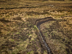 Freshly dug peat briquettes on Lewis (Nanooki ) Tags: isleoflewis scottishisles scotland unitedkingdom gb peat briquettes fetlar shetlandislands