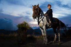 Young Rider (wu di 3) Tags: indonesia rider bromo boy horse surabaya southeastasia mountbromo