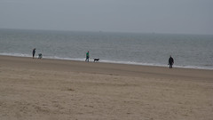 IMG_1062 (EadaoinFlynn) Tags: curracloe beach sea ireland irishsea wexford
