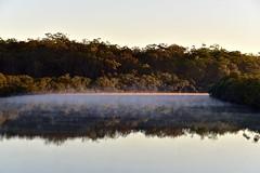 Morning calm (nealemaynard) Tags: morning nature sunrise calm queensland