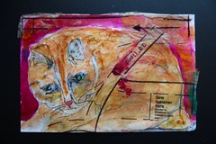 Obby Art (opal c) Tags: obby cat ink sketch paint acrylic stitching tissue paper collage