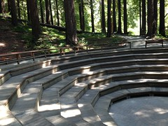 Morning Among the Redwoods (Melinda Stuart) Tags: theater grandstand amphitheater outdoors uc ucb berkeley trees garden public shadow eastbay ca california