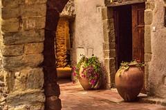 MONELLS, Girona (enricrubioros1) Tags: baixempurd entrada flors girona monells rac
