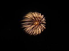 DSCN3010 (Yoru Tsukino) Tags: fireworks canada day 2016 night fire colorful colourful annual yearly