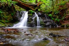 Rustic Falls, Orcas Island, Washington (darekfarmer) Tags: darekfarmerphotography moranstatepark orcasisland pnw rusticfalls washington waterfall