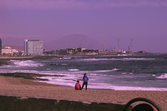 cold day at the beach (pedropapini) Tags: