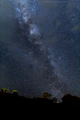 For Archie (Celebrating over 2 million views. Thank you) Tags: forarchie nephew 8yrsold project milkyway thegreatoceanroad trees stars longexposure heavens above upwards lookup happy exploredthankyou the great ocean road