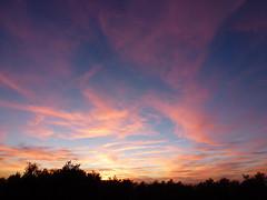 Nubes sobre el olivar (John LaMotte) Tags: cielo nwn nubes clouds cceres contraluz caceres sunset puestadesol