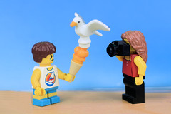 Wait! Camera eats first... (Lesgo LEGO Foto!) Tags: lego minifig minifigs minifigure minifigures collectible collectable legophotography omg toy toys legography fun love cute coolminifig collectibleminifigures collectableminifigure beach beachboy cameraeatsfirst camera cameras eats first mom mother son motherandson momandson mum mummy seagull icecream ice cream mango
