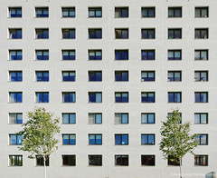 8x8 windows watching 2 trees (Johan Konz) Tags: apartmentbuilding apartment building architecture weidevenne purmerend netherlands vinexsite outdoor windows pattern trees 8x8 squares abstract straight geometric urban 2d