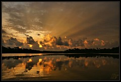 Arise (WanaM3) Tags: lake water clouds sunrise reflections golden pond texas bayou rays pasadena canoeing paddling crepuscularrays bayareapark armandbayou wanam3