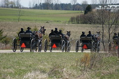 2012-04-22_Line Up (Mark Burr) Tags: holyrood mennonite horseandbuggy langside brucecounty oldordermennonite greyoxavenue