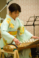 Plucking Her Pain (Fesapo) Tags: party music woman beautiful japan female canon japanese prime lowlight traditional performance culture indoors 7d instrument kimono shimane matsue koto pluck   lowlit 135mmf2l