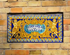 Sevilla : Azulejos : Real Fbrica de Tabacos  -  Universidad (Pantchoa) Tags: espaa sevilla andaluca spain nikon universidad espagne sville andalousie azulejos rawfile d90 fileraw royaltobaccofactory capturenx2 realfbricadetabacos 18105mmf3556g viewnx2