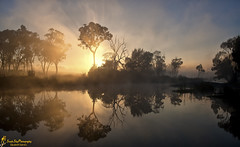 Smokey Morning (southern_skies) Tags: fog sunrise reflections smoke waterhole