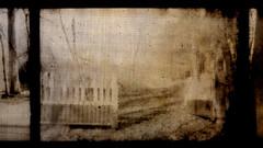 jardin de grand lieue (laboratoire de l'hydre) Tags: mer silhouette port gare decay jardin gaz stalker bela rue loire brouillard forêt usine ponton brume jetée tarr ancien cheminée pologne abandonné portail tarkovski angelopoulos bestcapturesaoi
