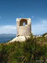 Terrasini: Capo Rama (Luciano ROMEO) Tags: panorama mare torre barche sole palermo azzurro celeste orizzonte porti terrasini pescatori riserva palmette caporama marinerie