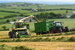 Krone Big X 480 SPFH filling a Thorpe Silage Trailer drawn by a Fendt 714 Tractor (Shane Casey CK25) Tags: county ireland winter horse irish tractor field grass work pull krone big hp nikon power cattle cows cut earth farm cork farming working machine ground x machinery soil crop thorpe cutting 480 feed farmer trailer agriculture drawn silage pulling contractor filling horsepower fodder lifting 714 fendt agri barryroe spfh d7100 grass16 silage16 silage2016 grass2016