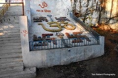 D72_9423 (Tom Ballard Photography) Tags: 20160314 indiaadventure part4 flowers cows pigs poop peeing people trash taxi food