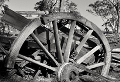 goin' nowhere (holly hop) Tags: mortlock homestead dunluce australia centralvictoria farm sheepfarm abandoned empty rustyandcrusty rusty ruins decay ruraldecay derelict outdoors wagon wagonwheel wooden bw monochrome