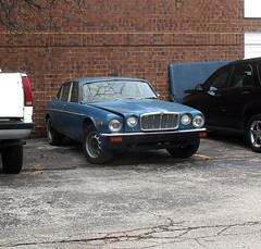 Jaguar (*hajee) Tags: jag jaguar daimler