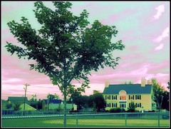 Summer Sunset Scene In Chelmsford - Taken by STEVEN CHATEAUNEUF On August 27, 2016 - Editing Was Done On September 14, 2016 by Using Heat Map On Picasa 3 And Brightness Was Reduced In Aviary Editing (snc145) Tags: summer seasons sky clouds sunset trees leaves foliage park grass fence building architecture landscape scenery photo editedimage picasa3editing heatmap august272016 september142016 stevenchateauneuf photoshop colors colorful bright bold vivid vividstriking flickrunitedaward thisphotorocks